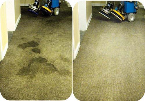 carpet cleaning in houston tx