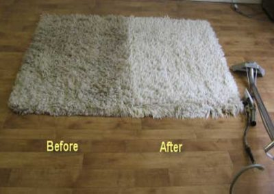 carpet cleaning service houston tx