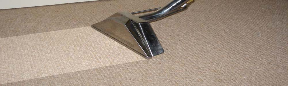 carpet cleaning carrollton texas