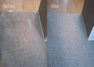 best carpet cleaners in houston