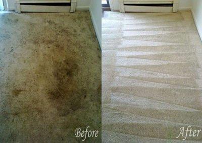 carpet cleaners houston tx