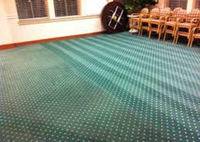 carpet cleaning company houston tx