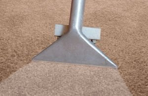 green carpet cleaning dallas
